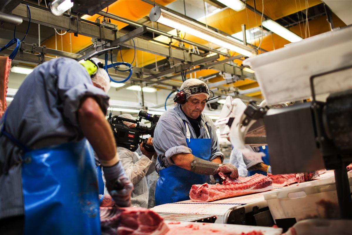 Det er måske ikke overraskende, hvis forandringerne i slagteribranchen ødelægger de ansattes trivsel. Men det samme sker i alle brancher, viser unik undersøgelse