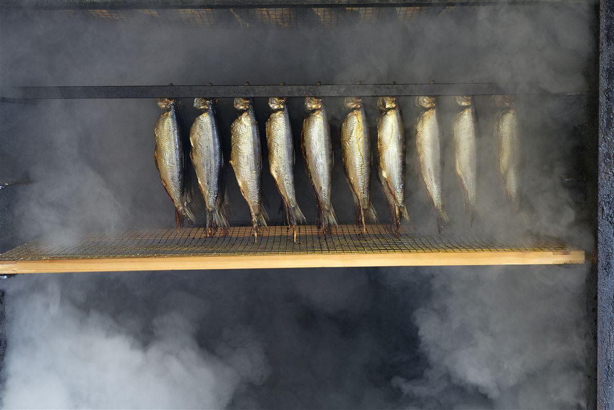 Bornholm er kendt for sine røgede sild. Det er dog mere Folkemødet, færgedrift og Danish Crown, der giver solskinsøen opmærksomhed i folketingssalen.