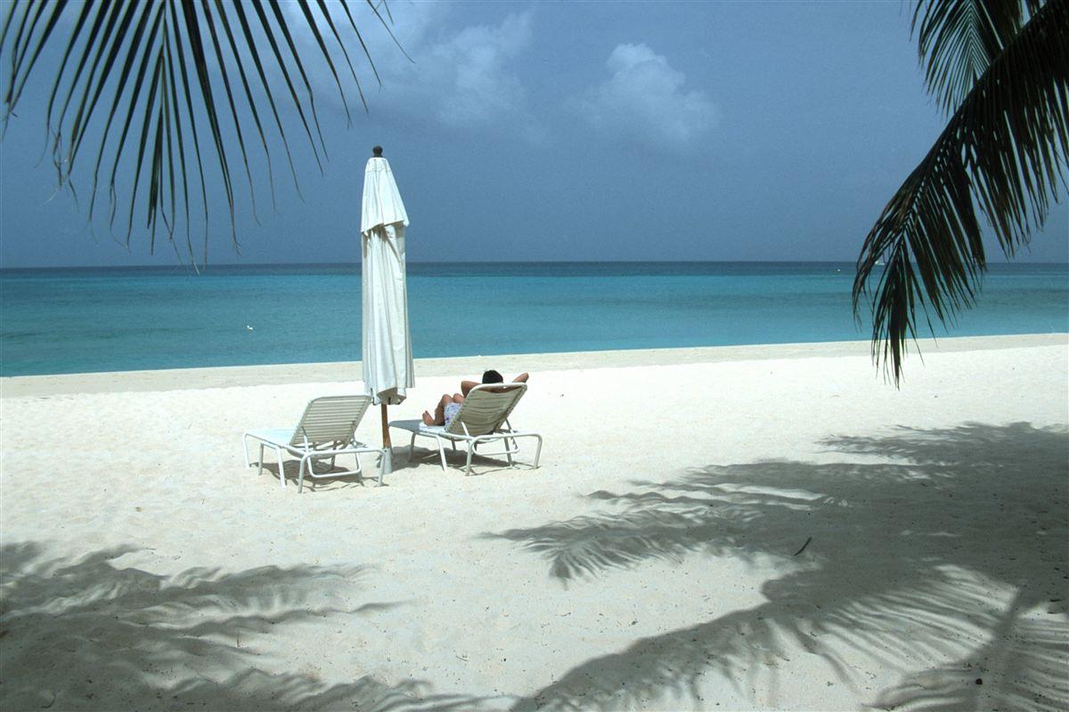 Det offentlige skal kunne sige nej til private leverandører, som har forbindelse til skattely som Caymanøerne, mener Enhedslisten.