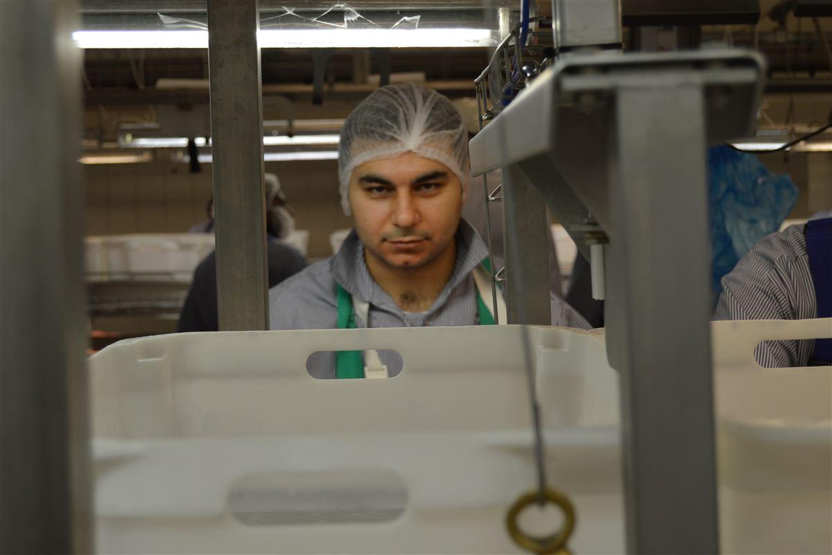 Sardar Hasso startede i efteråret i et kommunalt forløb på et slagteri. I dag er han fastansat.